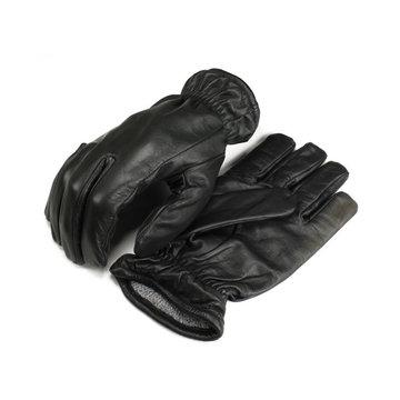Frisker Glove